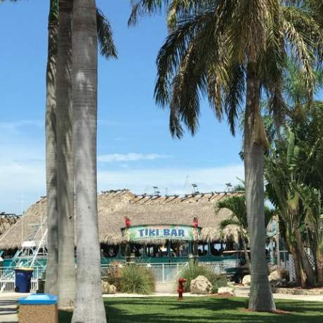 Exterior of Tiki Bar with palm trees