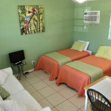 Light green walls, two twin beds, partial images of couch and two person table, television with tv stand, parrot image