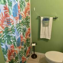 Bathroom - shower with tropical shower curtain, toilet