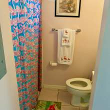 Bathroom - shower with flamingo shower curtain, flamingo towels, toilet