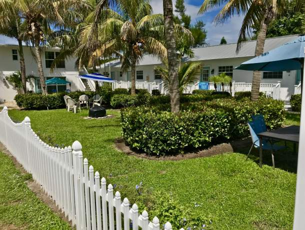 Grassy courtyard with picket fence and palm trees