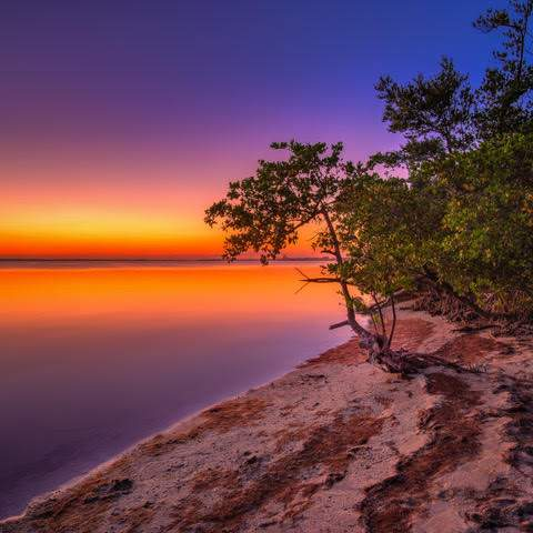 River shoreline with sunset