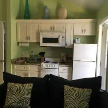 Sofa, kitchenette with white cabinet, small stove, microwave, refrigerator