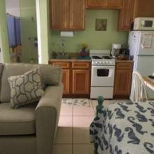 Light green interior. Partial images of bed and couch, oak kitchen cabinets with small stove, microwave, refrigerator