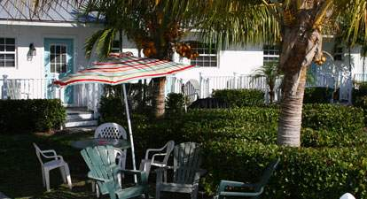 Courtyard surrounded by foliage, palm trees. Table with chairs and umbrella